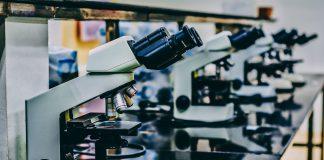 การใช้ยาต้านจุลชีพ